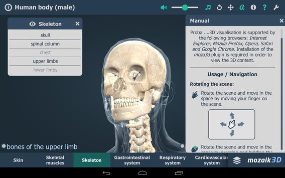 Human body (male) screenshot 16