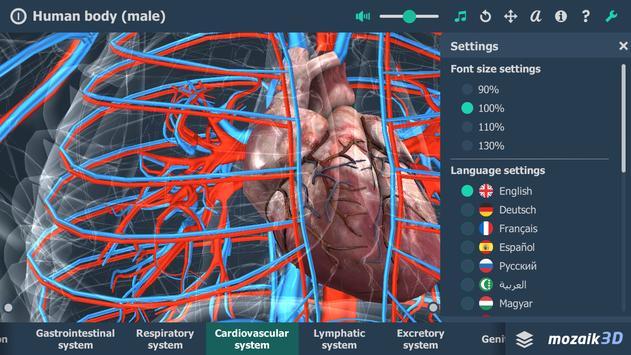 Human body (male) screenshot 3