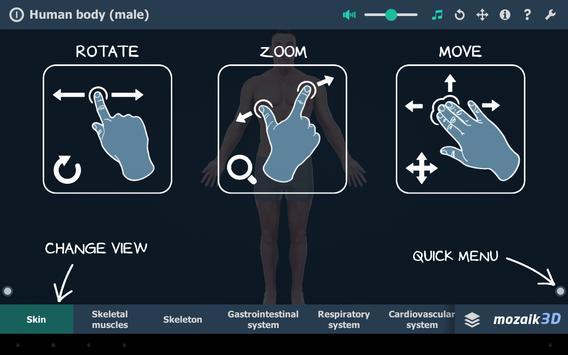 Human body (male) screenshot 6