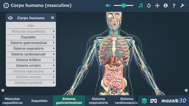 Corpo humano (masculino) 3D educacional RV imagem de tela 3