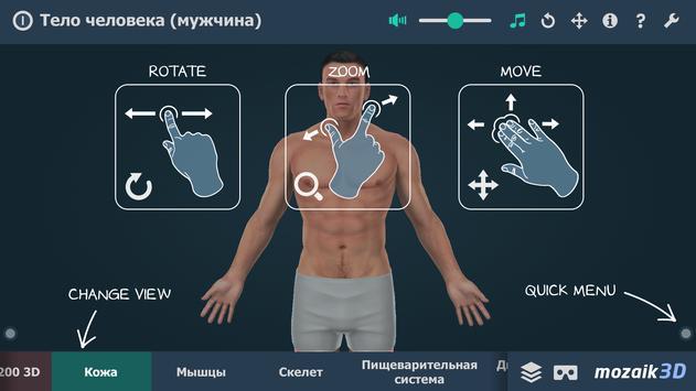 Тело человека (мужчина), интерактивное 3D ВР постер