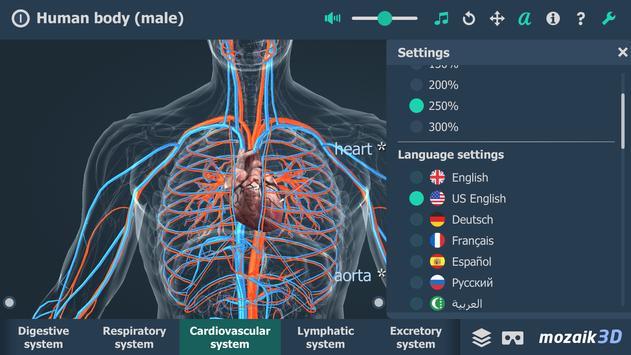 Human body (male) syot layar 1