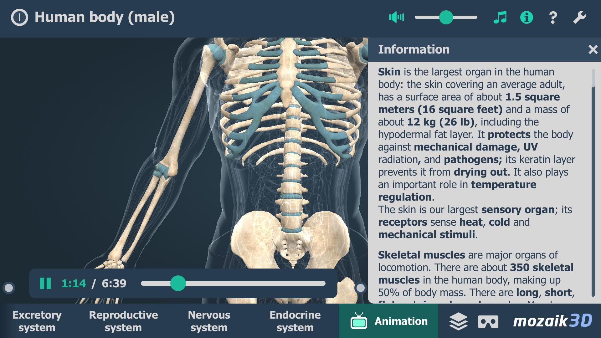 Human body (male) educational VR 3D for Android - APK Download
