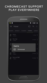 Trình phát nhạc Pulsar - Pulsar Music Player ảnh chụp màn hình 6