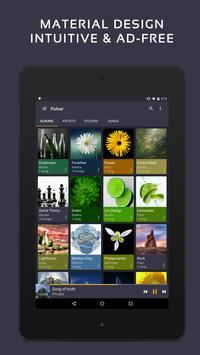 Trình phát nhạc Pulsar - Pulsar Music Player ảnh chụp màn hình 9