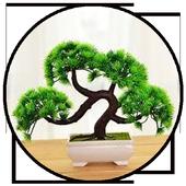 Bonsai Plant Collection icon