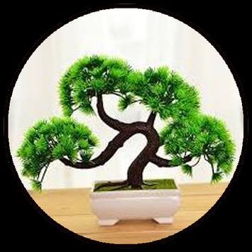 Bonsai Plant Collection poster
