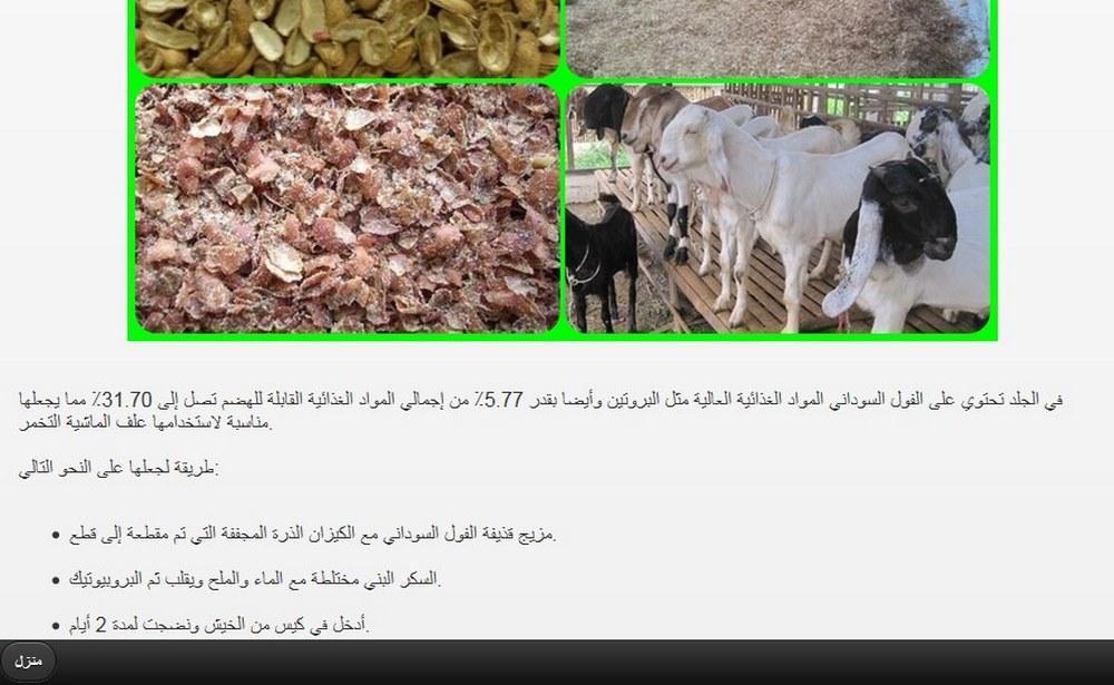 animal feed fermentation poster