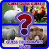 Learn Animals Names Quiz icon