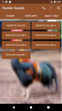 Rooster Sounds poster