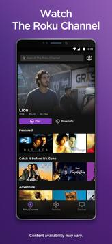 Roku screenshot 2