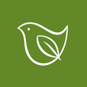 grünebandbreite icon