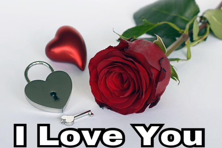 I Love You Flowers For Android Apk Download