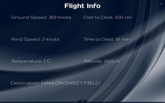 Flight Info poster