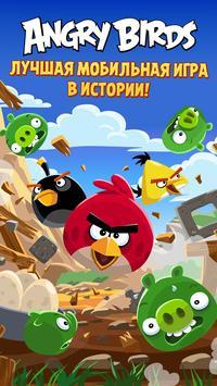 Angry Birds постер