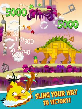 Angry Birds screenshot 6