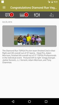 Diamond Run screenshot 1