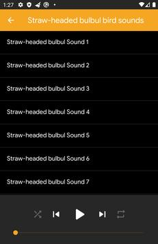 Straw-Headed Bulbul Sounds screenshot 1