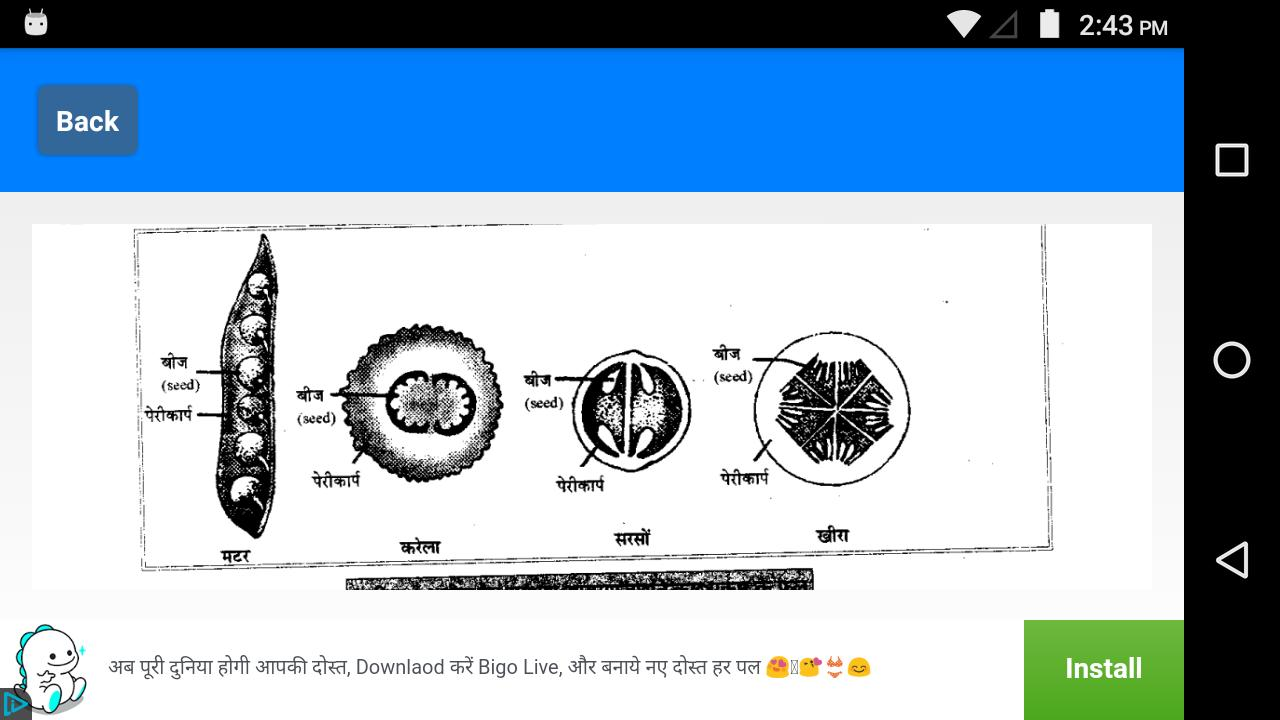 NCERT Class 12 Biology Notes Hindi Medium for Android - APK Download