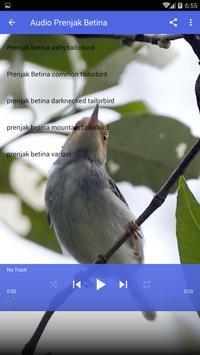 Suara Burung Prenjak Gacor screenshot 3