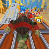 Ninja Subway Turtle 2019 icon
