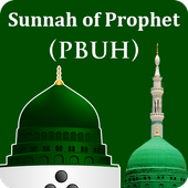 Sunnah of Holy Prophet (PBUH) - Everyday Guidance icon