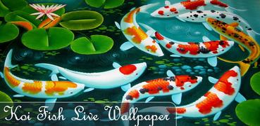 Koi 5D Live Wallpaper