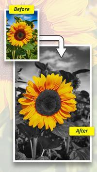 Color Splash Effect Editor : Splash Effects screenshot 8