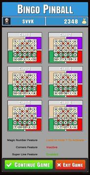 Bingo Pinball poster