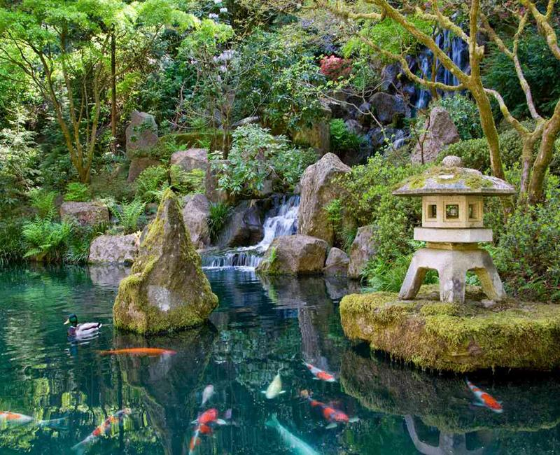 Japanese Water Garden Design For Android Apk Download