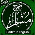 Sahih Muslim Hadith (English)
