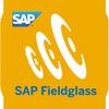SAP Fieldglass Time Entry icon
