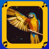 sonidos de animales para tonos y llamadas gratis icon