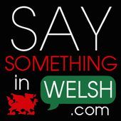 Say Something in Welsh icon