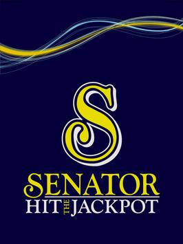 Senator Hit The Jackpot screenshot 9