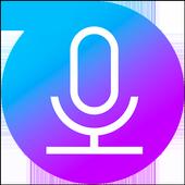 Voice Recorder Zeichen