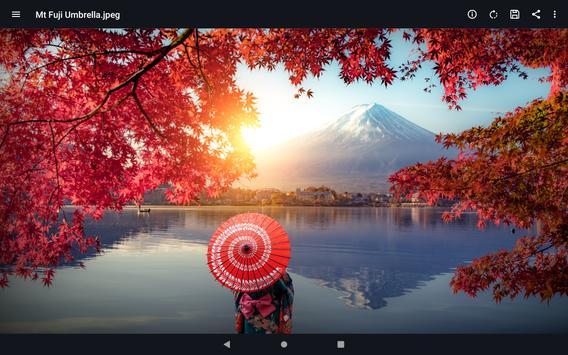 13 Schermata File Viewer