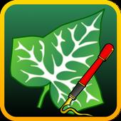 ikon Ivy Draw: Vector Drawing
