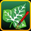 Ivy Draw Zeichen