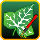 Ivy Draw: Vector Drawing APK Android