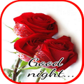 Good Night Flowers Images Gif