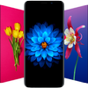 🌺 Flower Wallpapers - Colorful Flowers in HD & 4K ícone