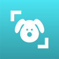 Dog Scanner – Dog Breed Identification