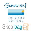Somerset Primary School APK