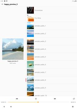 FE File Explorer スクリーンショット 13