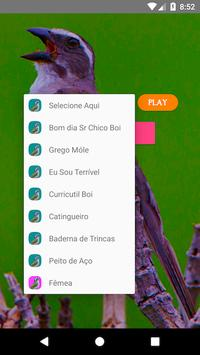 Trinca Ferro Verdadeiro screenshot 1