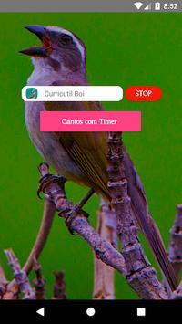 Trinca Ferro Verdadeiro screenshot 2