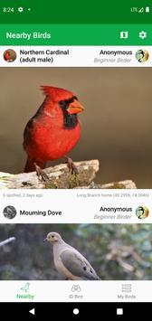 Smart Bird ID 海报