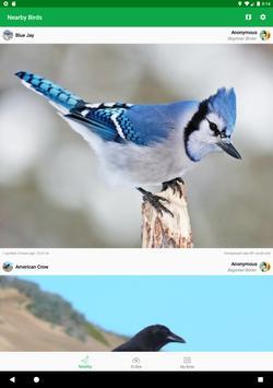 Smart Bird ID 스크린샷 8