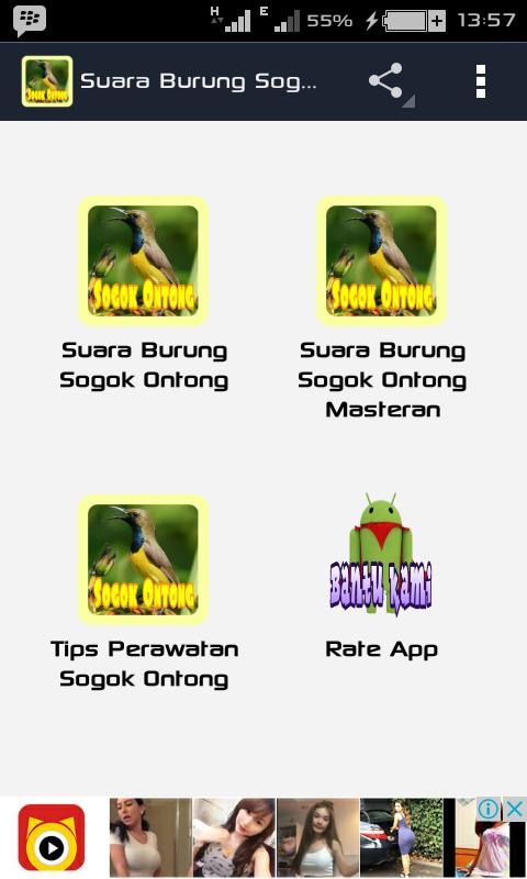 Suara Burung Sogok Ontong For Android Apk Download